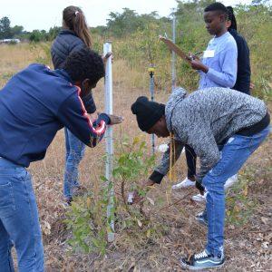 Ndlovu's Science Camp June 2019
